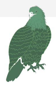 Illustration of an eagle in green.